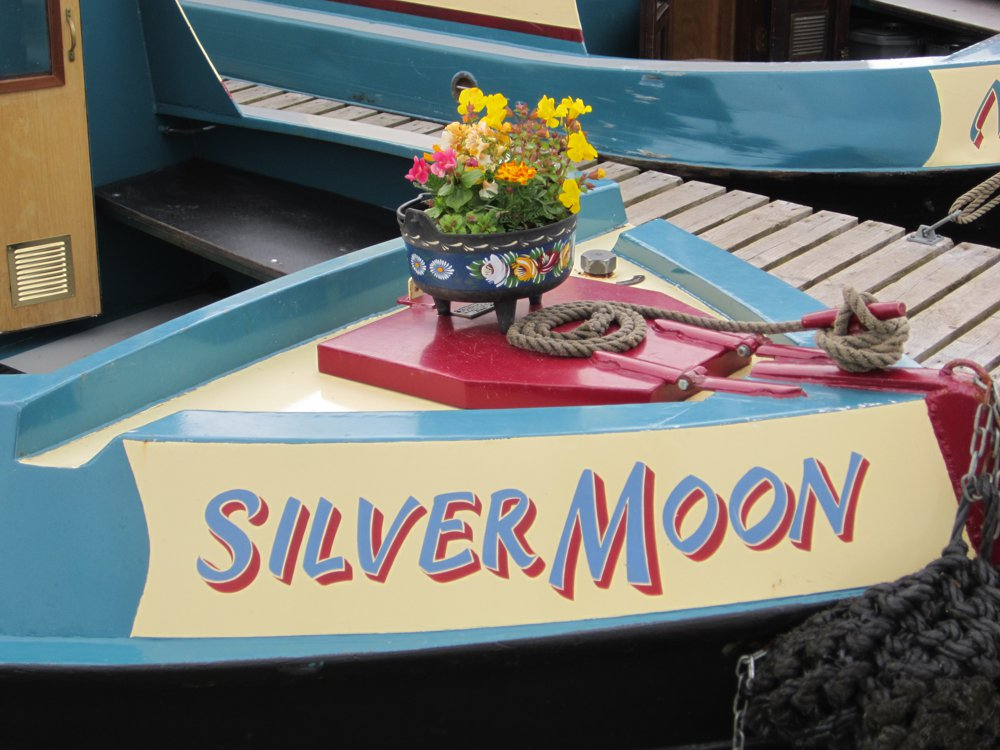 Silver Moon Flowers Included