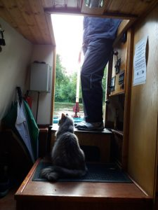 Pippa's purrfect Cheshire Cat Narrowboat Holiday